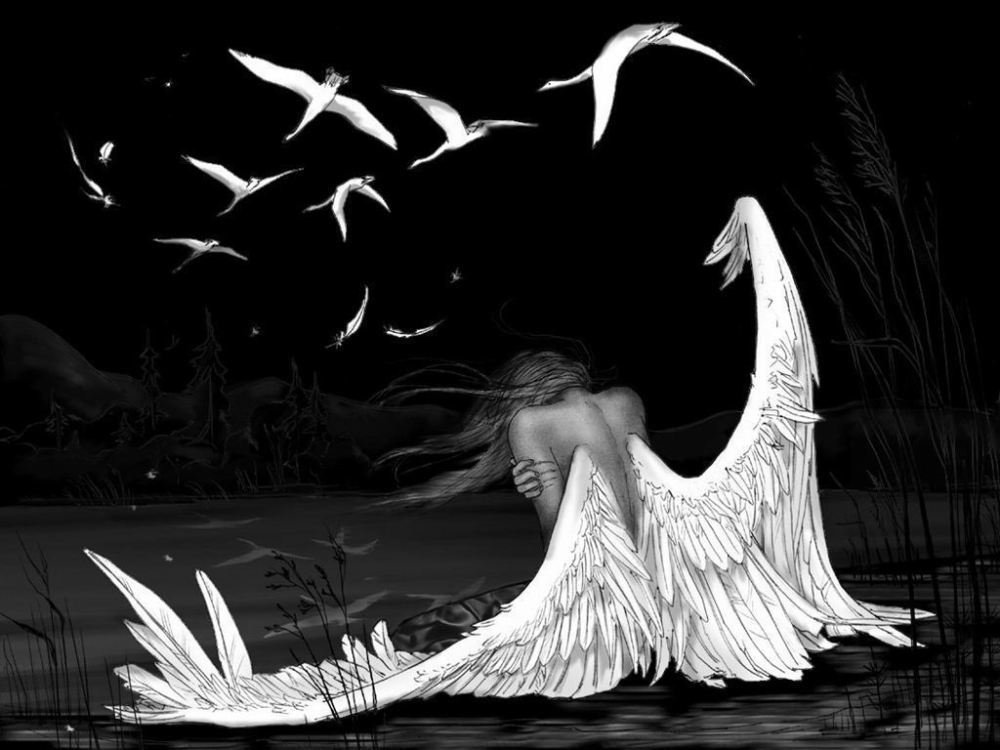broken_wings_1